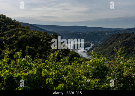 hiking on rheinsteig trail in the middle rhine valley, germany - Stock Photo