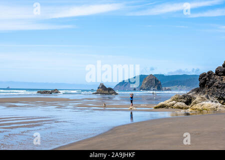 Woman with a dog and other people are walking on the waterline in the Northwest of the Pacific ocean coast with fancy rocks sticking out of the water - Stock Photo