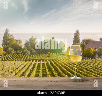 Glass of white wine on wooden rail with country rural scene in background. Green leaves and calm summer sunshine day. Copyspace. Alcohol drinks on backyard of big house. Delicious and tasty. - Stock Photo