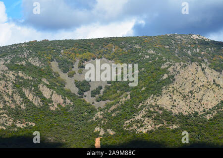 Oak woodlands and Mediterranean scrubland in Sierra Madrona natural park, southern Spain - Stock Photo