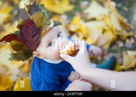 One year old baby on an autumn walk. Beautiful child in creoron from autumn leaves eats an apple