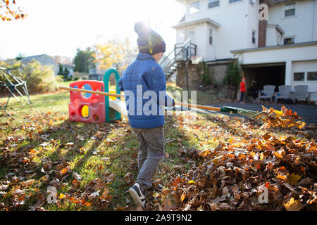 Rear view of a young boy raking leaves during Autumn in the backyard - Stock Photo