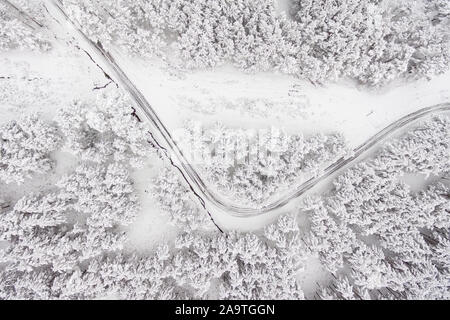 Aerial view on the road and forest at the winter time. Snowy forest, natural winter landscape .  - Stock Photo