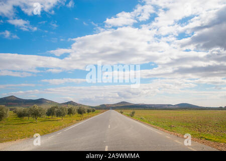 Byway and olive groves. Fuente el Fresno, Ciudad Real province, Castilla La Mancha, Spain. - Stock Photo