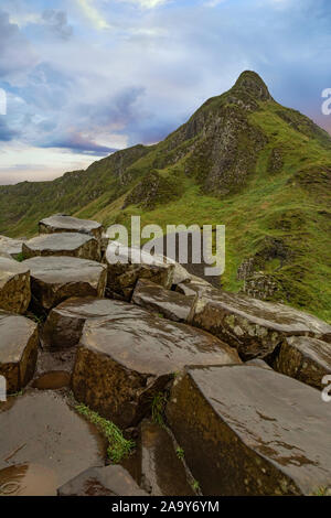 The Giant's Causeway at dawn on a sunny day with the famous basalt columns, the result of an ancient volcanic eruption. County Antrim on the north coa