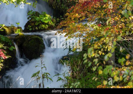 Stream and autumn foliage - Stock Photo