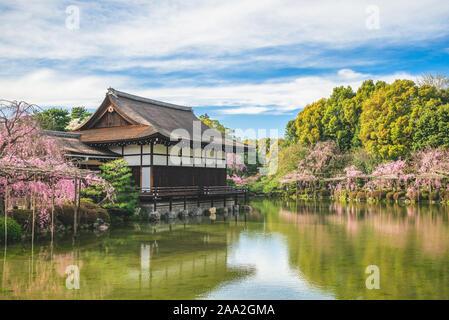 Japanese garden in Heian Shrine, kyoto, japan with cherry blossom - Stock Photo