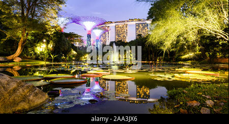 Stunning view of the Gardens By The Bay with the Supertree Grove with the Water Lily Pond in the foreground. - Stock Photo