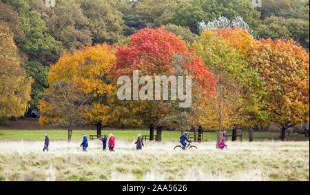 Men women children and families enjoying an Autumn day out walking and cycling  in the National trust  Tatton Park parkland Knutsford Cheshire England - Stock Photo