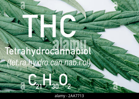 close up view of medical marijuana leaf on white background with thc formula illustration - Stock Photo