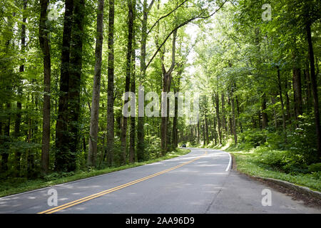 car in the distance on parkway us 441 highway route through great smoky mountains national park usa - Stock Photo