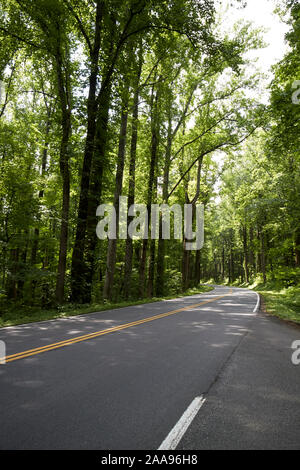 empty parkway us 441 highway route through great smoky mountains national park usa - Stock Photo