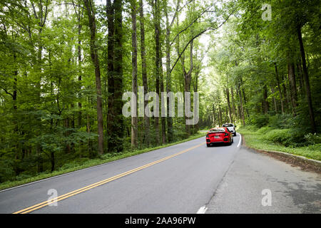 cars driving along parkway us 441 highway route through great smoky mountains national park usa - Stock Photo