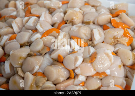 The meat from shelled scallops - Stock Photo