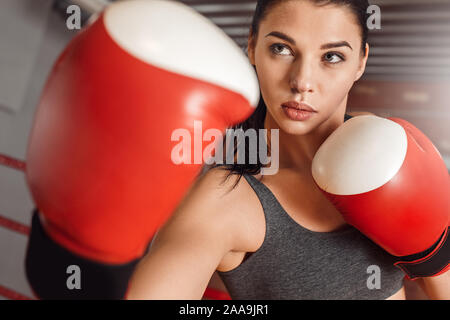 Boxing. Woman boxer in gloves practicing on ring protecting confident close-up - Stock Photo