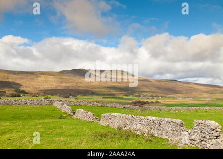 Whernside Hill seen from near Chapel-le-Dale in the Yorkshire Dales, England. - Stock Photo