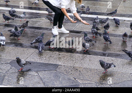 People are feeding the pigeons standing on the pavement on the square in Milan, Italy. - Stock Photo