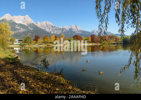View of some ducks on Lake Ritzensee on a sunny autumn day in Saalfelden. The mountain range Steinernes Meer and the blue sky reflecting in the water - Stock Photo