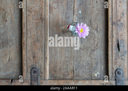 Pink summer flower in a small glass vase from above on an old shabby wooden furniture, copy space - Stock Photo
