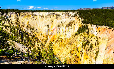 The yellow and orange sandstone walls of the cliffs of the Grand Canyon of the Yellowstone River in Yellowstone National Park in Wyoming, USA - Stock Photo