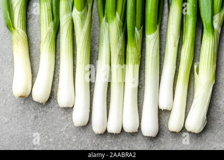 Farm fresh vegetables. Organic, freshly harvested onion. Spring green onions, background. - Stock Photo