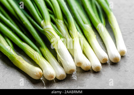 Green onion with fresh scallion. Organic vegetables freshly harvested from the garden - Stock Photo