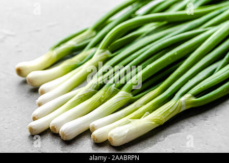 Bunch of fresh spring onion with green chive freshly harvested from the garden - Stock Photo