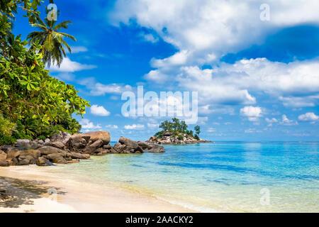 Beautiful tropical sandy island beach on Seychelles with palm tree and turquoise ocean. Sunny scenery, blue sky, Mahe island.