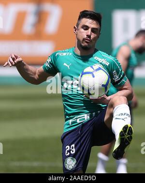 SÃO PAULO, SP - 21.11.2019: TREINO DO PALMEIRAS - Willian, from SE Palmeiras, during training at the Football Academy. (Photo: Cesar Greco/Fotoarena) - Stock Photo