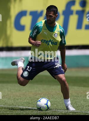 SÃO PAULO, SP - 21.11.2019: TREINO DO PALMEIRAS - SE Palmeiras player Luan during training at the Football Academy. (Photo: Cesar Greco/Fotoarena) - Stock Photo