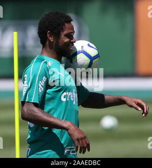 SÃO PAULO, SP - 21.11.2019: TREINO DO PALMEIRAS - Luiz Adriano, from SE Palmeiras, during training at the Football Academy. (Photo: Cesar Greco/Fotoarena) - Stock Photo