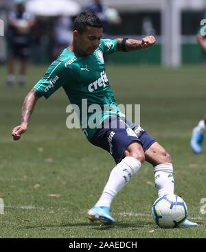 SÃO PAULO, SP - 21.11.2019: TREINO DO PALMEIRAS - Player Dudu, from SE Palmeiras, during training at the Football Academy. (Photo: Cesar Greco/Fotoarena) - Stock Photo