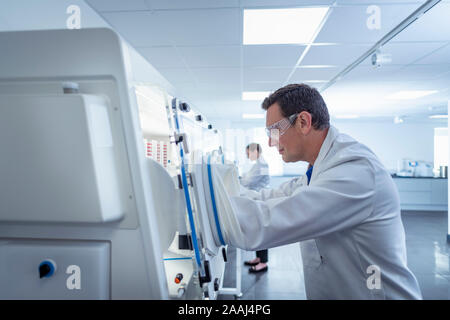 Scientist making bacterial culture on agar dish in anaerobic cabinet in laboratory - Stock Photo