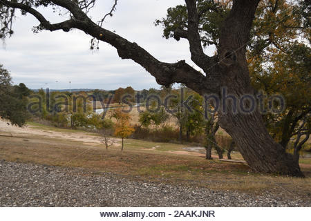 Texas Hill Country Landscape Fredericksburg Texas Park Fall Colors And Live Oak Tree In Lady Bird Johnson Park In Fredericksburg Texas Usa Autumn Stock Photo Alamy
