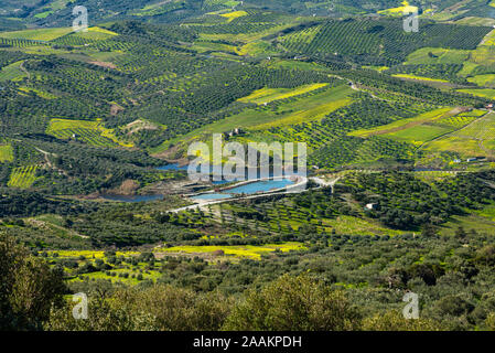 Aerial view of rural Archanes region landscape. Unique scenic panorama Olive groves, vineyards, green meadows and hills view in spring. Heraklion - Stock Photo