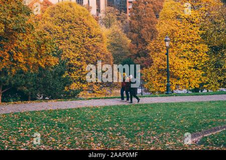 Brussels, Belgium. 20th Nov, 2019. People walk at the Leopold Park in Brussels, Belgium, Nov. 20, 2019. Credit: Zhang Cheng/Xinhua/Alamy Live News - Stock Photo