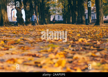 Brussels, Belgium. 20th Nov, 2019. People walk at the Park of the Fiftieth Anniversary in Brussels, Belgium, Nov. 20, 2019. Credit: Zhang Cheng/Xinhua/Alamy Live News - Stock Photo
