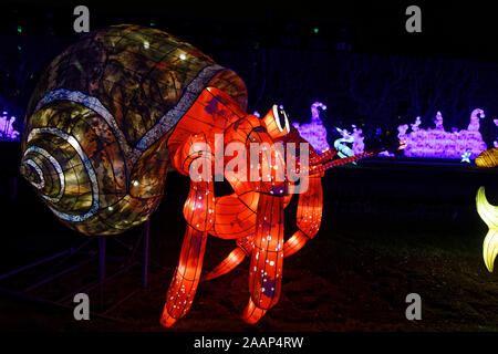 Paris, France. 22th Nov, 2019. 'Ocean on the way to enlightenment', festival of lights of Jardin des Plantes in Paris, France. - Stock Photo