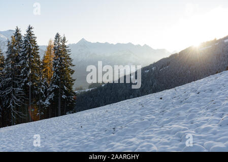 View of the mountain Kitzsteinhorn in winter with trees in the foreground. View from Keilberg, Schmittenhöhe, Zell am See, Salzburger Land, Austria. - Stock Photo