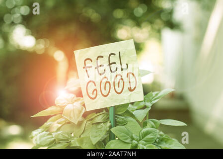 Text sign showing Feel Good. Business photo text relating to or promoting an often specious sense of satisfaction Plain empty paper attached to a stic - Stock Photo