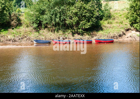 Blue rowing boat followed by three red rowing boats, all moored at the side of a river - Stock Photo