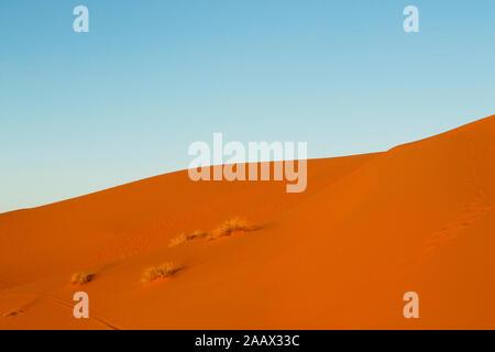 Erg Chebbi, Merzouga, Ziz Valley, Sahara Desert, Morocco - Stock Photo