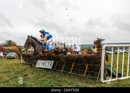 Ballynoe, Cork, Ireland. 24th November, 2019.  Horses and riders take the last fence in the first race at the Point to Point meeting that was held on the lands of the Mulcahy family at Boulta, Ballynoe, Co. Cork, Ireland.- Credit; David Creedon / Alamy Live News Stock Photo