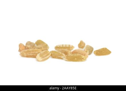 Dinkel, Spelz (Triticum spelta), Gruenkern, Einzelkoerner | spelt wheat (Triticum spelta), unripe spelt grain, single grains | BLWS035023.jpg [ (c) bl - Stock Photo