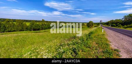 Sunny summer day in Leningrad region. - Stock Photo