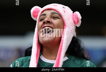 Sao Paulo, Brazil. 24th Nov, 2019. Supporter before match between Palmeiras vs Grêmio valid for the 34th round of the 2019 Brazilian Championship, held at Allianz Parque, in São Paulo/SP on Sunday afternoon (24). Credit: Foto Arena LTDA/Alamy Live News - Stock Photo