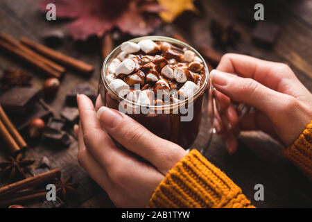 Female Hands Holding Cup Of Hot Chocolate With Cinnamon. Tasty Comfort Food. Hot beverage for autumn and winter season
