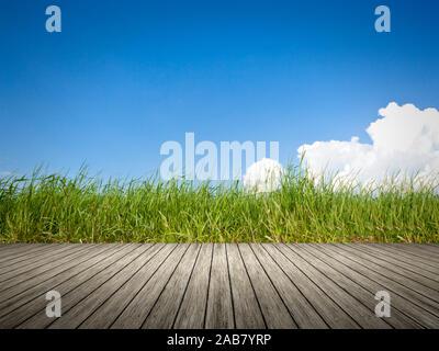 Sicht von einem Bootssteg aus auf gruenes Gras - Stock Photo
