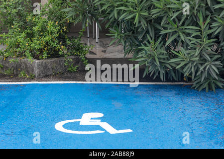 Disabled parking spaces. Parking lot with painted white sign of wheelchair on asphalt, parking spaces for disabled visitors. - Stock Photo