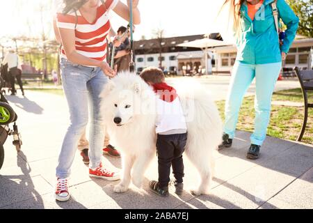 toddler child resting on fluffy dog during family getaway, at Herrenchiemsee, Chiemsee, Bavaria, Germany - Stock Photo